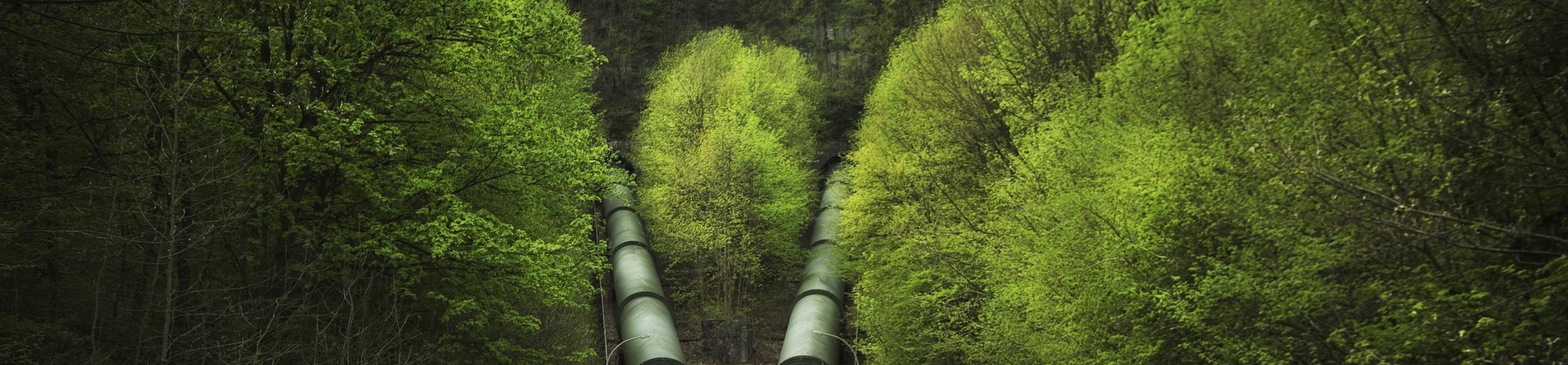 Pressure pipelines in green surroundings